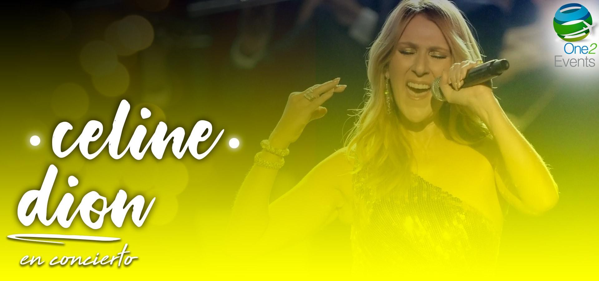 Experiencia Concierto Celine Dion en Brooklyn